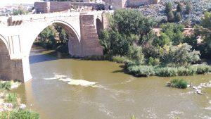 20160722 El Tajo bajo Puente de San Martin